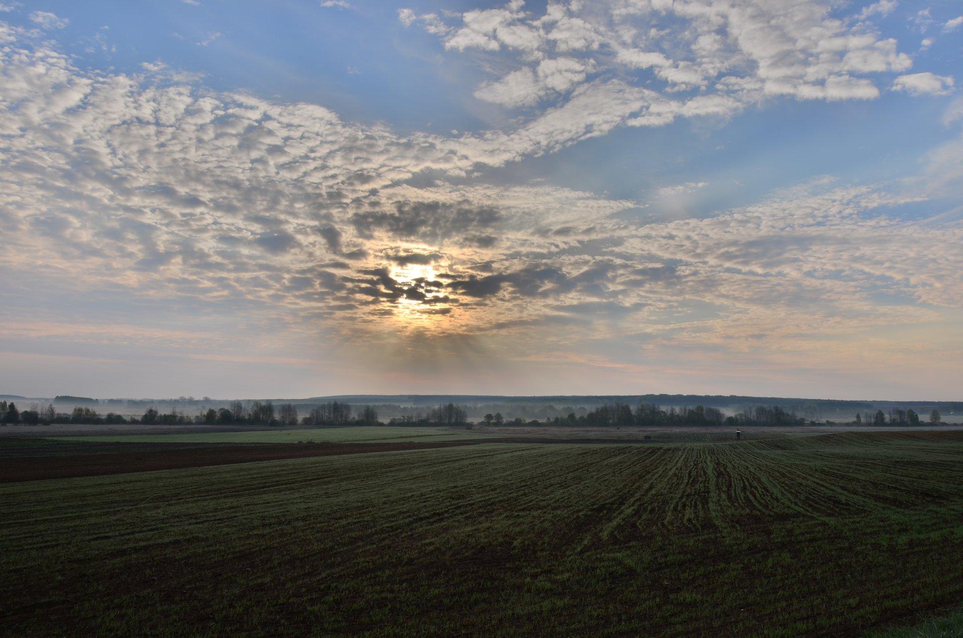 pole wschód słońca świtfree photo darmowe zdjęcie