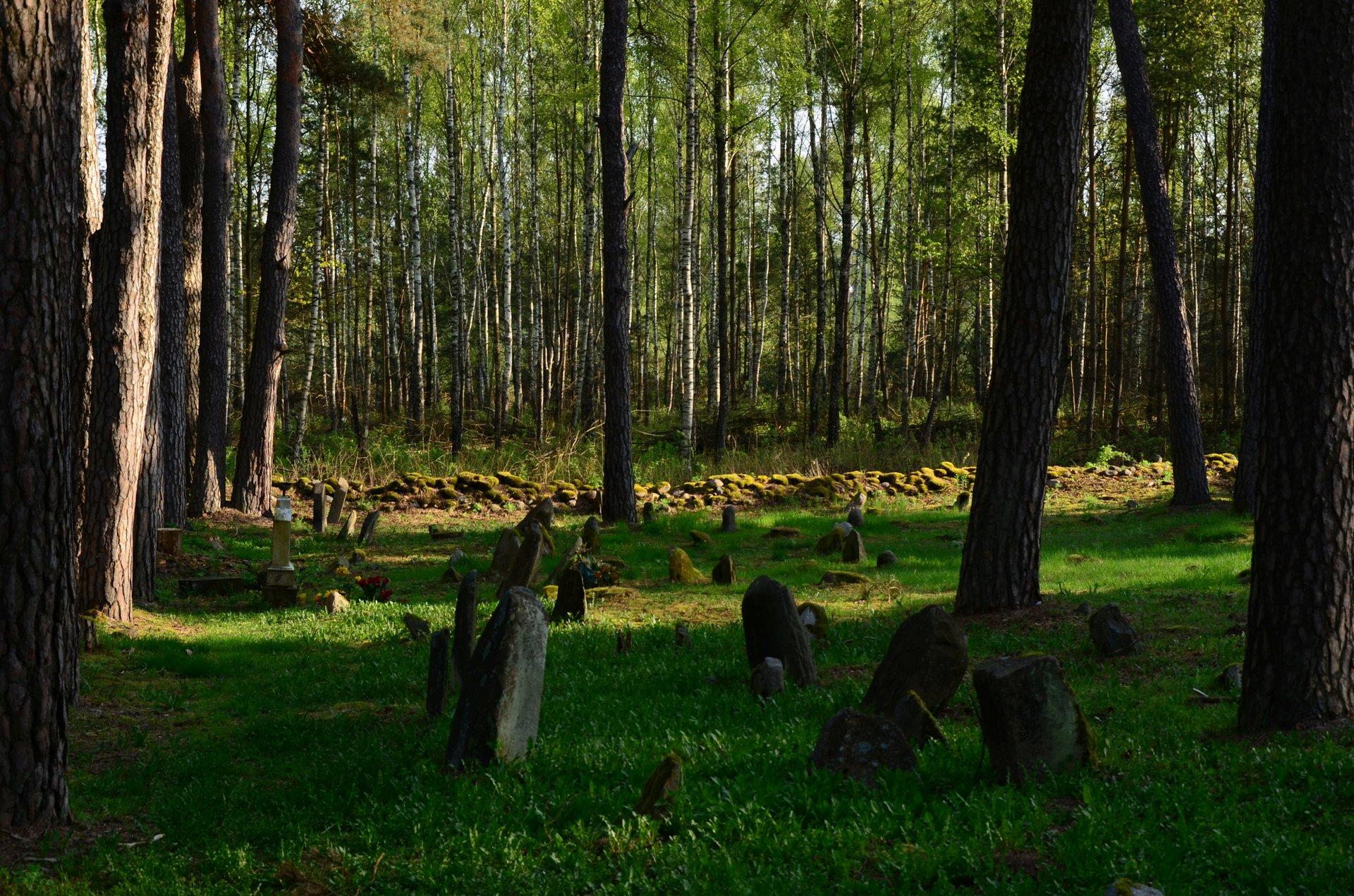 Kruszyniany cmentarz Tatarzy Muzułmanie religia Islamfree photo darmowe zdjęcie