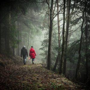 To dzikie i odludne tereny. Warto tam się wybrać na spacer lub przejażdżkę