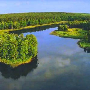 Zapomniane jezioro w Puszczy. Ma swoją wyspę tajemnic. To wspaniałe miejsce na spacer.