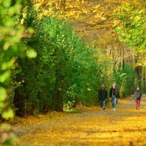 Białystok pod wpływem jesieni stał się magiczny. Dwa kroki od bajecznej atmosfery!
