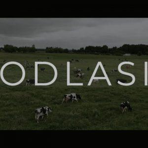Niesamowity film o Podlasiu. Każdy, kto go zobaczy natychmiast się spakuje i tu przyjedzie!
