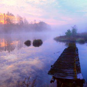 3 miejsca na Podlasiu, gdzie poranne mgły wyglądają cudownie!