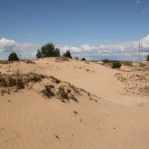 To nie pustynia tylko podlaskie wydmy! Tutaj jest piękne w każdą porę roku.