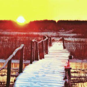 5 najlepszych miejscówek na Podlasiu, gdy spadnie śnieg