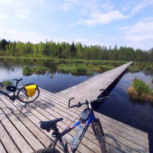 Przepiękna trasa w Puszczy Knyszyńskiej. Warto ją zwiedzić rowerem.