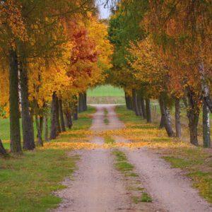 5 turystycznych hitów Podlasia na jesień